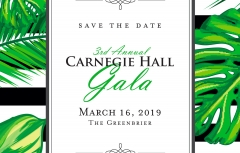 Third Annual Carnegie Hall Gala